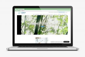 pine-portfolio-website-oxygiene